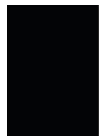 logotipo_carga_feelmotion2019